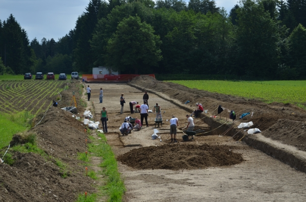 Arheološka izkopavanja na najdišču Repovnice